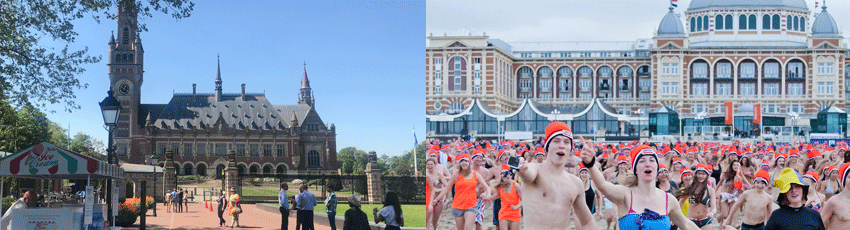 Peace Palace and New Years dive Scheveningen The Hague Rotterdamexperience GO Experience DMC